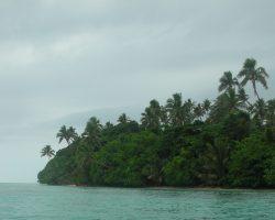 Coastal Ecosystems and Mangroves