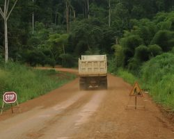 Time to act – an urgent call to action on deforestation